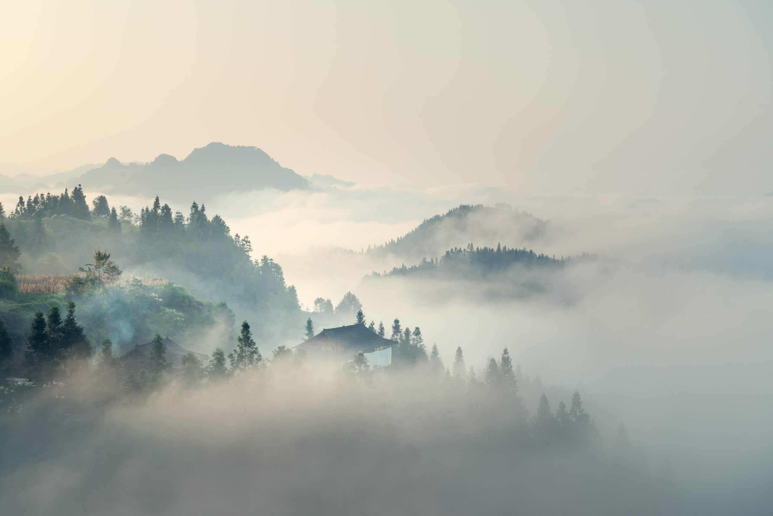 The morning mist in guizhou,china