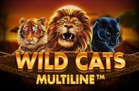 wild-cats-multiline-200x131-slot-review-red-tiger-gaming